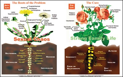 "Larger version of the Dandelion-Rose poster (about 22"" by 32"") is available for classrooms and other group settings."